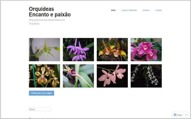 Orquídeas-Encanto-e-Paixão