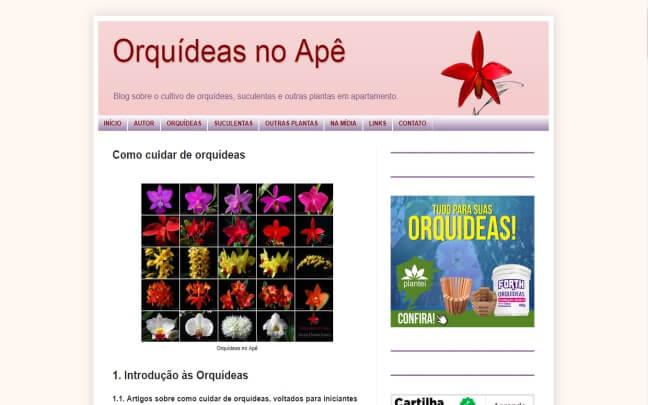 Orquídeas-No-Apê