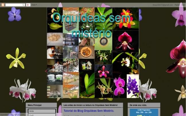 Orquídeas-Sem-Mistério