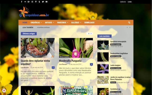 Orquideas.eco_.br_