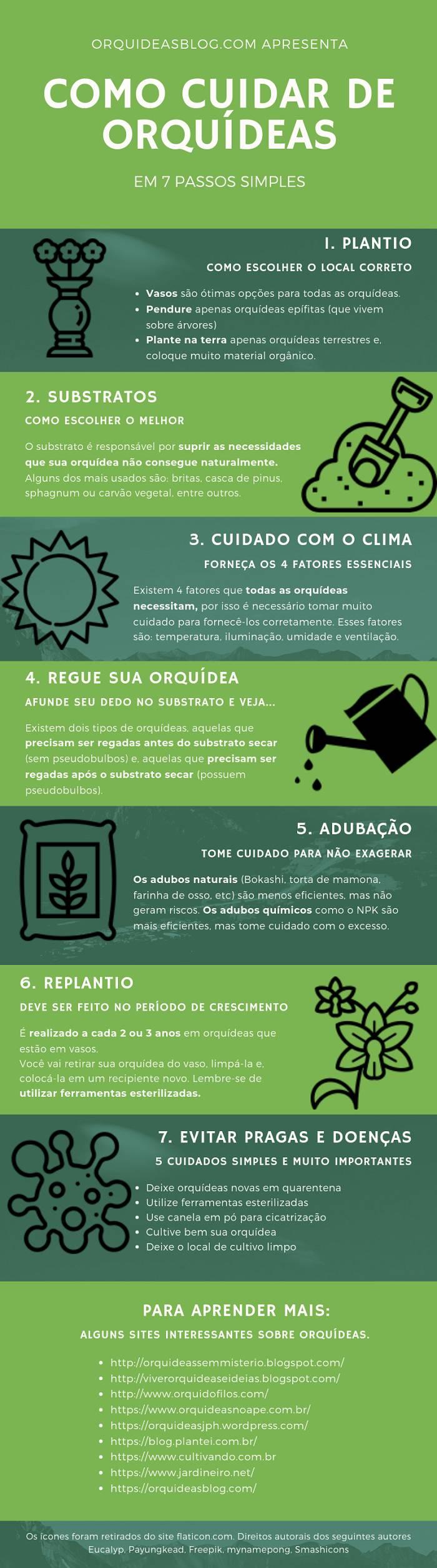 Infográfico-Como-Cuidar-de-Orquídeas