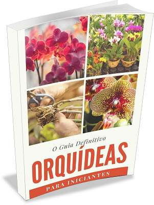 Manual-como-cuidar-de-orquídeas