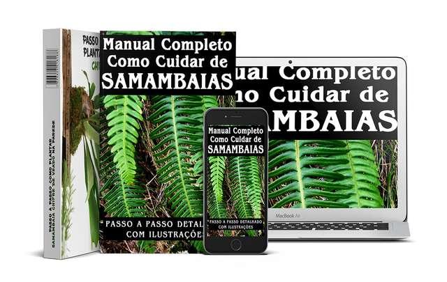 Manual-cultivo-de-samambaias