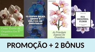 Manual-como-cuidar-de-orquídeas