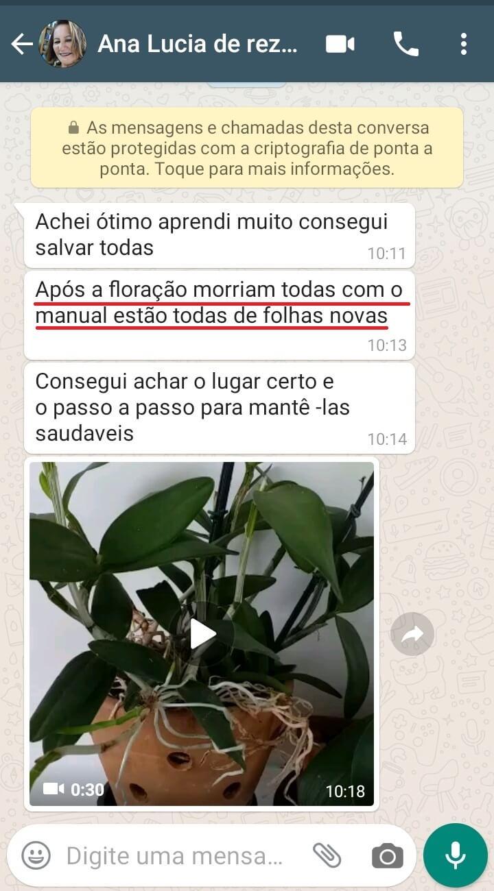 Ana-Lucia