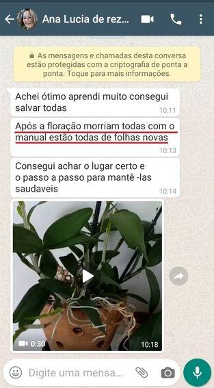 ana_lucia