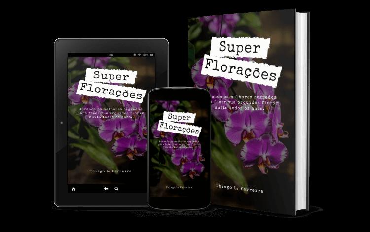 Super-Floracoes-bonus-1